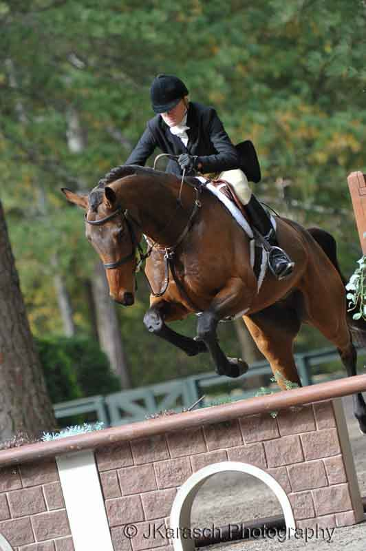 Equestrian Action-10