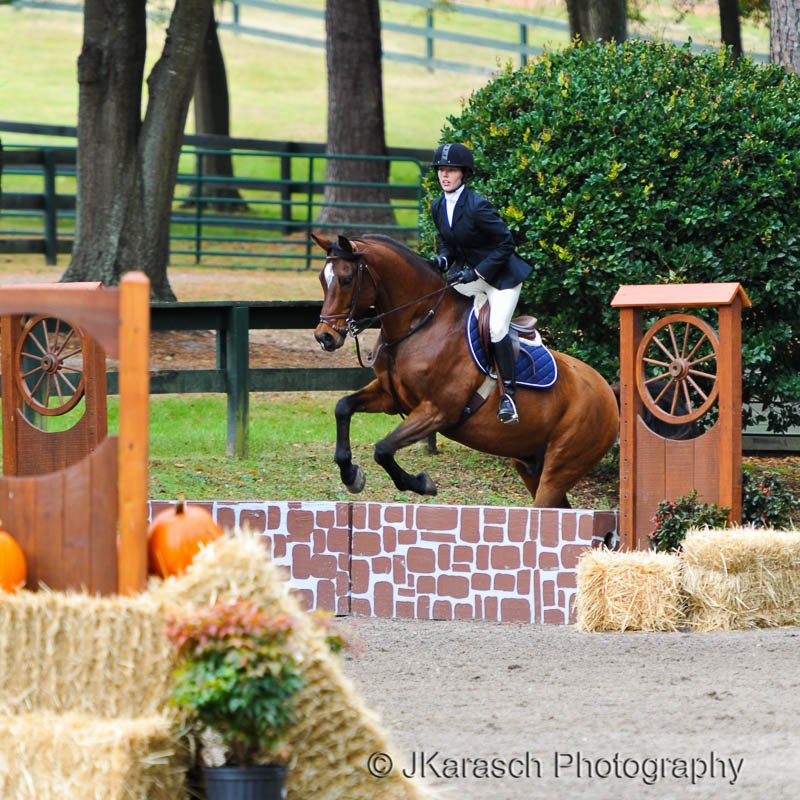 Equestrian Action-12