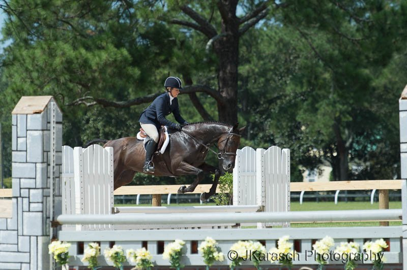 Equestrian Action-18