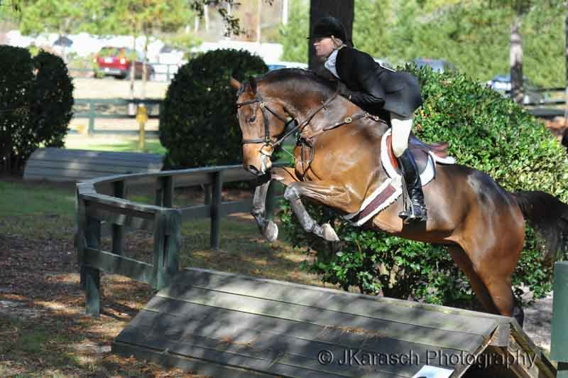 Equestrian Action-11