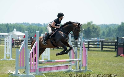 Retraining a Thoroughbred Racehorse